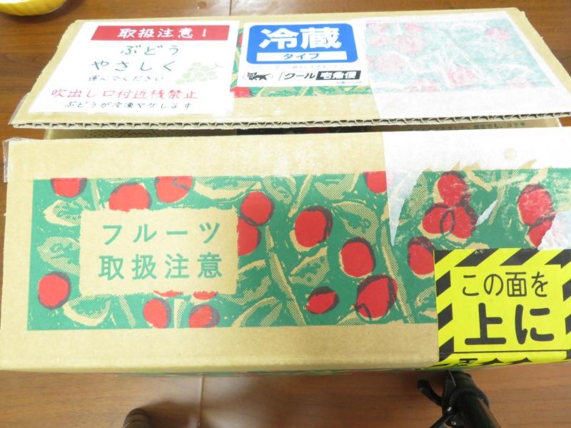 人気シャインマスカット!富士吉田市ふるさと納税返礼品