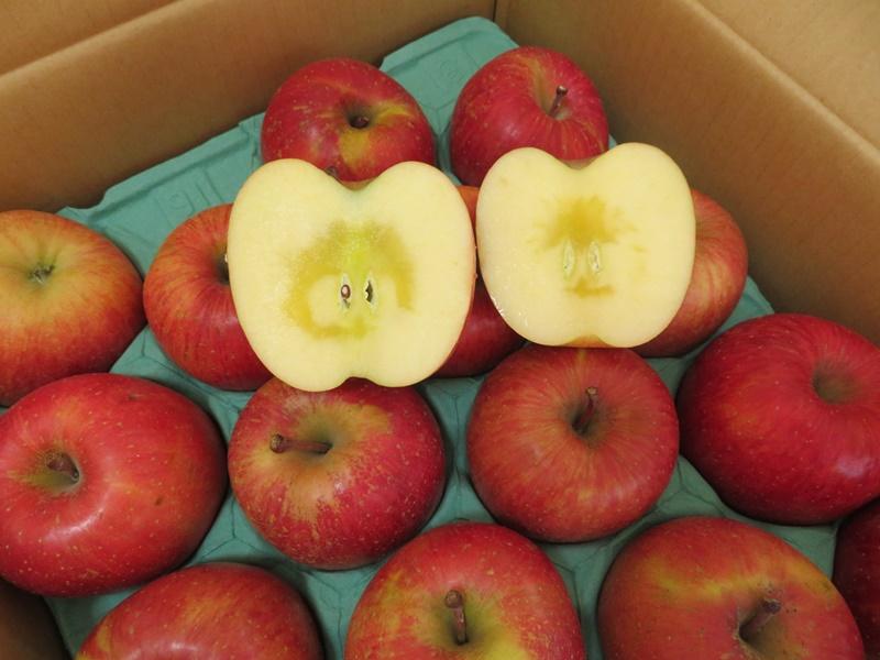 弘前市産・青森りんご